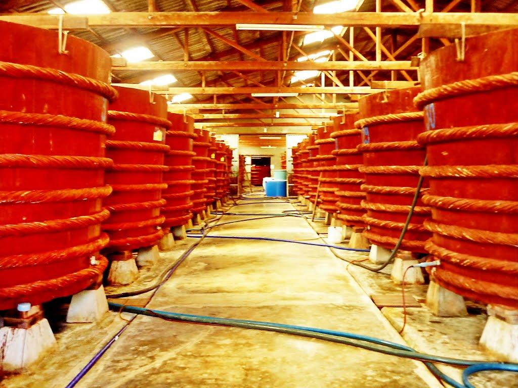 Nhà sản xuất nước mắm