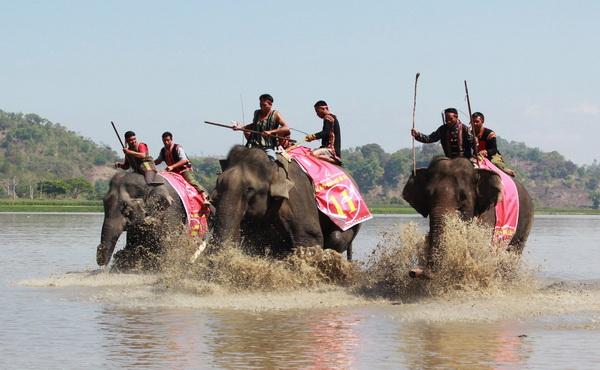 Một trận đua voi
