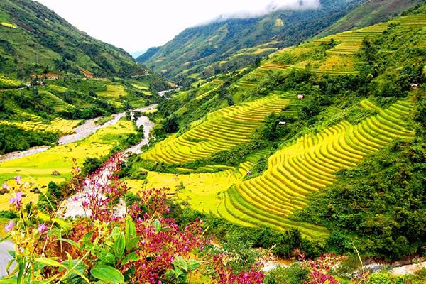 Thung lũng Mường Hoa đầy màu sắc