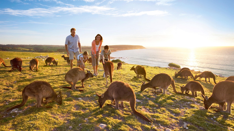 dao-kangaroo-island