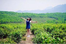 Địa điểm du lịch gần Đà Nẵng